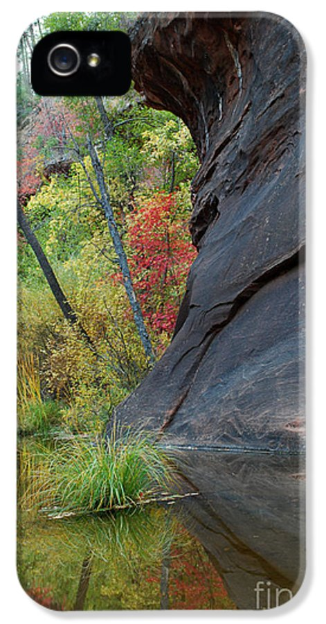Landscape IPhone 5 / 5s Case featuring the photograph Fall Colors Peek Around Mountain Vertical by Heather Kirk