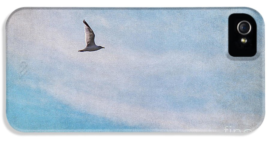 Gull IPhone 5 / 5s Case featuring the photograph Freedom by Angela Doelling AD DESIGN Photo and PhotoArt