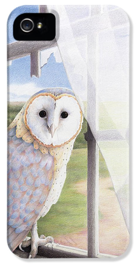 Owl IPhone 5 / 5s Case featuring the drawing Ghost In The Attic by Amy S Turner