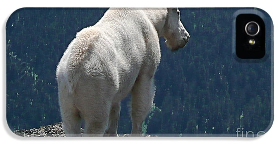 Photography IPhone 5 / 5s Case featuring the photograph Mountain Goat 2 by Sean Griffin