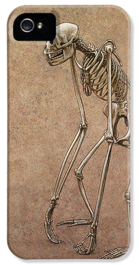 Patience IPhone 5 / 5s Case featuring the drawing Patient by James W Johnson