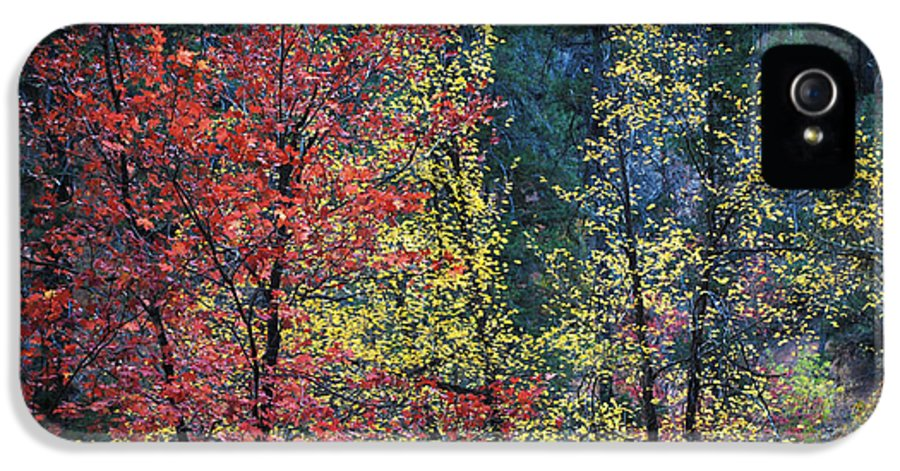 Landscape IPhone 5 / 5s Case featuring the photograph Red And Yellow Leaves Abstract Horizontal Number 1 by Heather Kirk