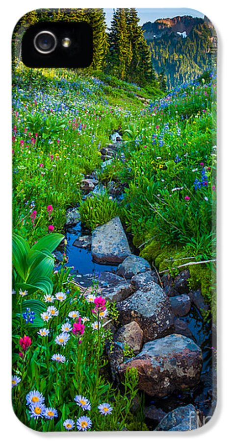 America IPhone 5 / 5s Case featuring the photograph Summer Creek by Inge Johnsson