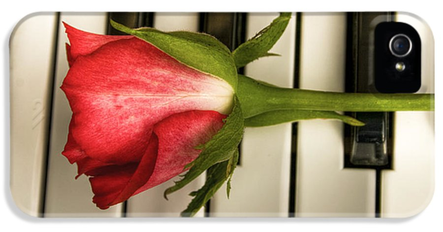 Piano IPhone 5 / 5s Case featuring the photograph The Piano Gift by Sophie De Roumanie