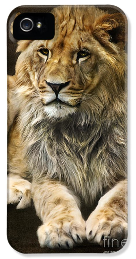 Lion IPhone 5 / 5s Case featuring the digital art The Young Lion by Angela Doelling AD DESIGN Photo and PhotoArt