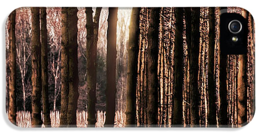 Trees IPhone 5 / 5s Case featuring the photograph Trees Gathering by Wim Lanclus