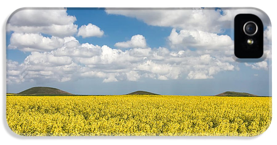 Brassica Napus IPhone 5 / 5s Case featuring the photograph Tumuli by Gabriela Insuratelu