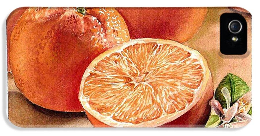 Orange IPhone 5 / 5s Case featuring the painting Vitamin C by Irina Sztukowski
