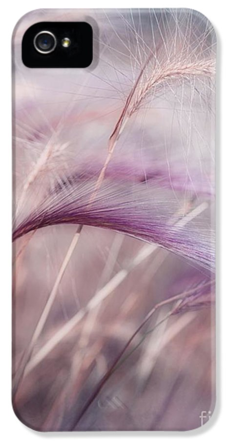 Barley IPhone 5 / 5s Case featuring the photograph Whispers In The Wind by Priska Wettstein