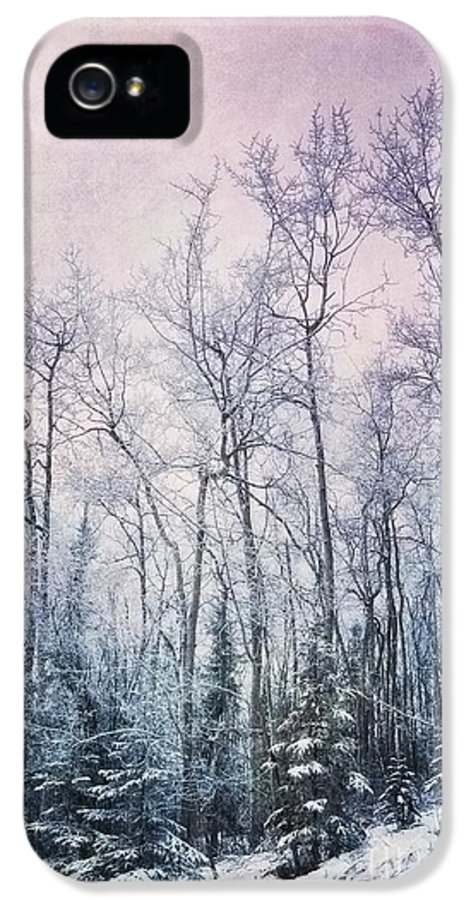Forest IPhone 5 / 5s Case featuring the photograph Winter Forest by Priska Wettstein