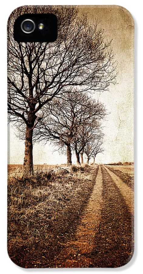 Aged IPhone 5 / 5s Case featuring the photograph Winter Track With Trees by Meirion Matthias