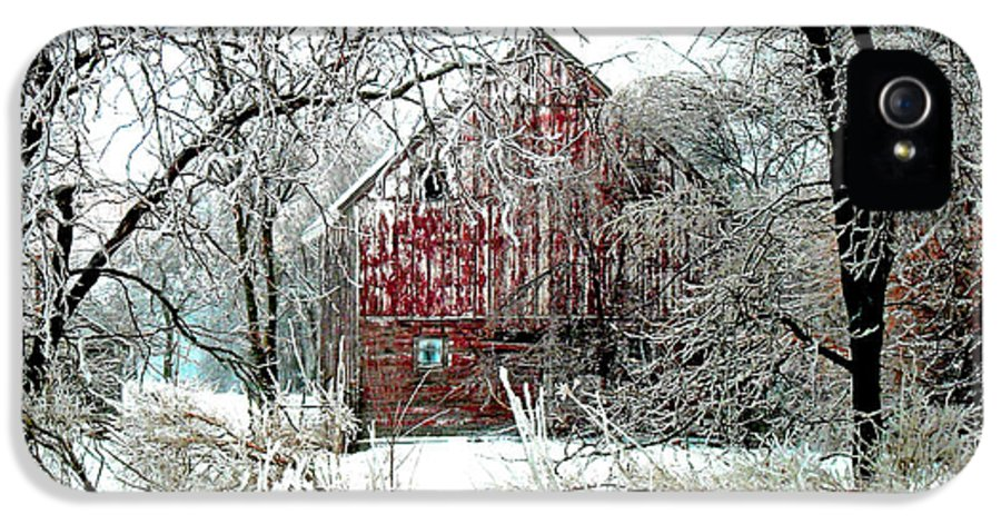 Christmas IPhone 5 / 5s Case featuring the photograph Winter Wonderland by Julie Hamilton
