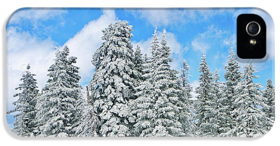 Winter IPhone 5 / 5s Case featuring the photograph Winterscape by Jeff Kolker