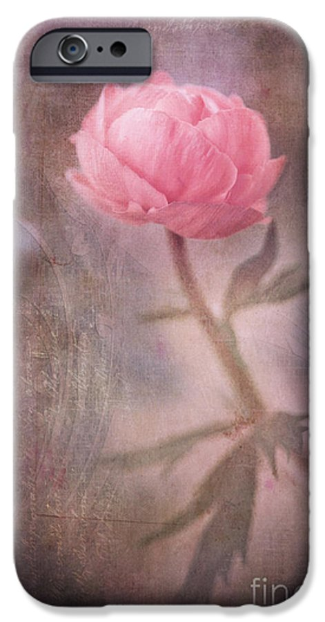 Ranunculus IPhone 6s Case featuring the photograph Dream-struck by Priska Wettstein