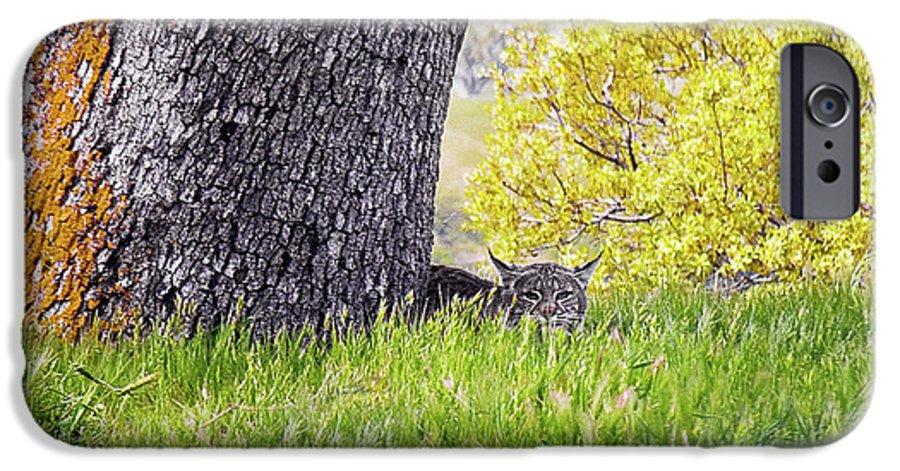 Landscape IPhone 6s Case featuring the photograph Bobcat Watch by Karen W Meyer