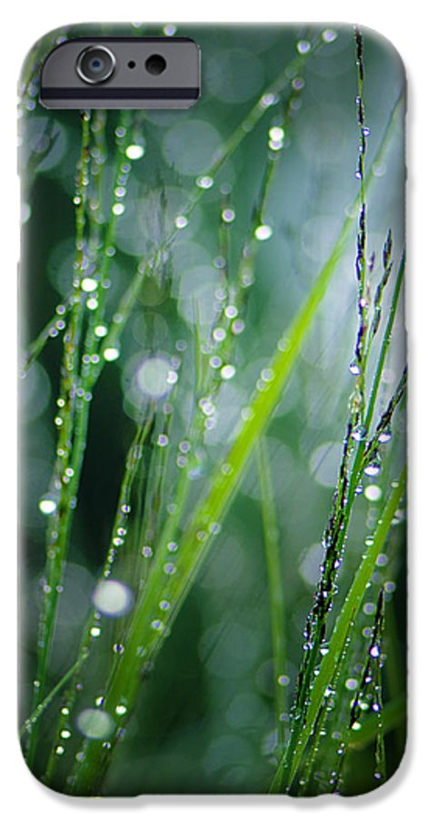 Dew IPhone 6s Case featuring the photograph Pearls Of Dew by Silke Magino