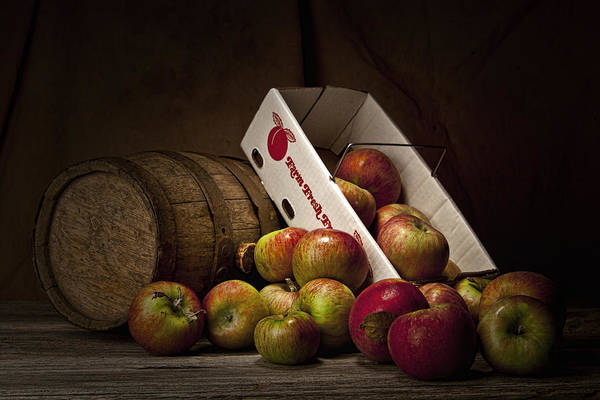Apple Poster featuring the photograph Fresh From The Orchard I by Tom Mc Nemar