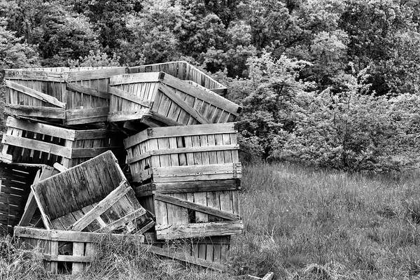 Apple Crates Poster featuring the photograph Apple Crate Bw by JC Findley