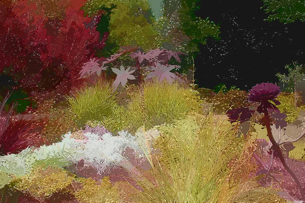 Paint Effect Photo Poster featuring the photograph The Painted Garden by Tom Prendergast