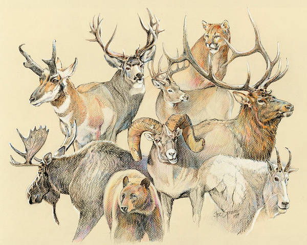 Wildlife Poster featuring the painting Western Heritage by Steve Spencer