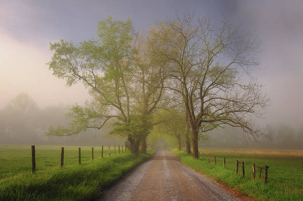 Great Smoky Mountains Poster featuring the photograph Sparks Lane by Joseph Rossbach