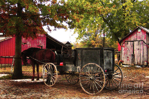 Amish Poster featuring the photograph Amish Farm Wagon by Terril Heilman