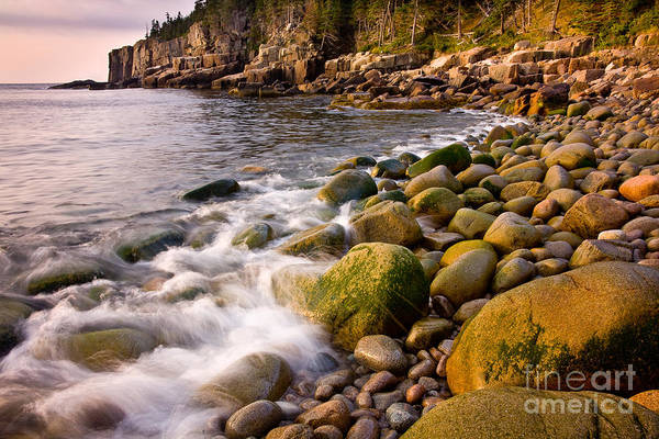 Acadia National Park Poster featuring the photograph Cobble Sunrise by Susan Cole Kelly