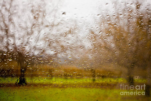 Sonoma County Poster featuring the photograph Droplets I by Derek Selander