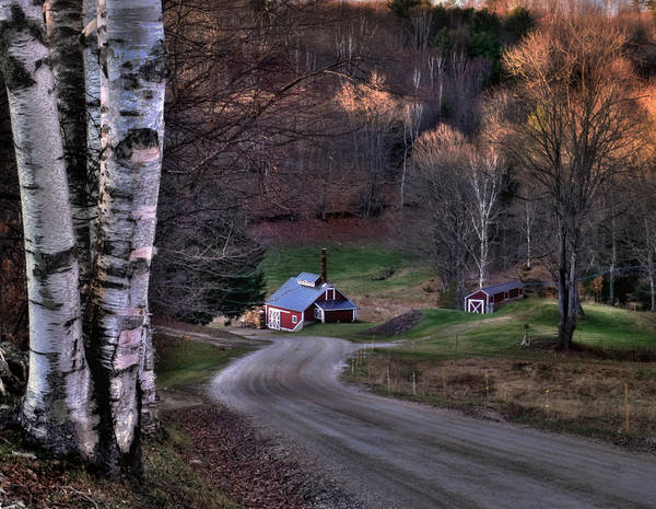 Scenic Landscape Poster featuring the photograph Sugar Shack - Reading Vermont by Thomas Schoeller