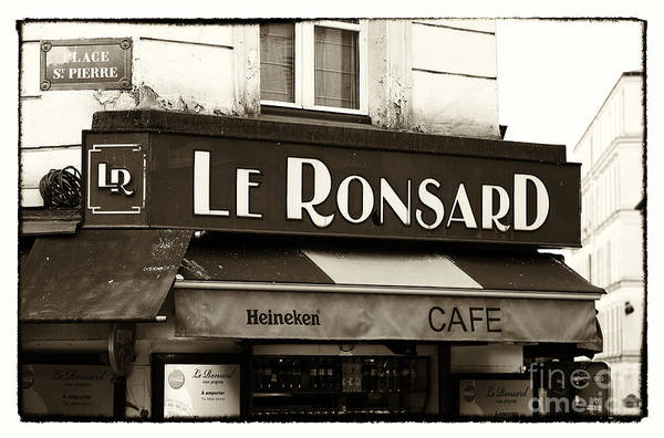 Le Ronsard Poster featuring the photograph Le Ronsard by John Rizzuto