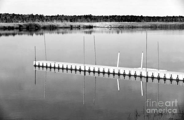Pine Barrens Dock Poster featuring the photograph Pine Barrens Dock by John Rizzuto