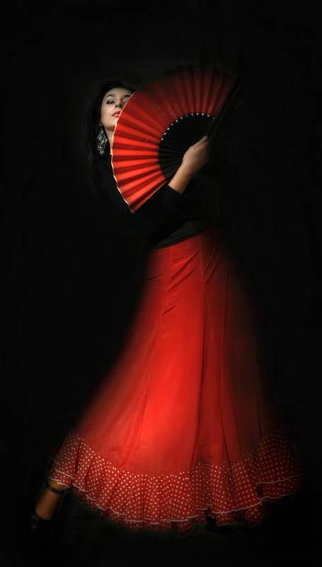 Poster featuring the photograph Flamenco by Viktor Korostynski