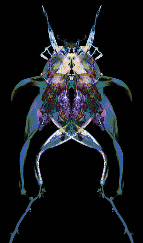 Psychedelic Poster featuring the photograph Psycho Frog Bug by David Kleinsasser