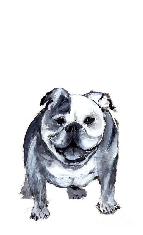 Bulldog Poster featuring the painting Bulldog by Barbara Marcus