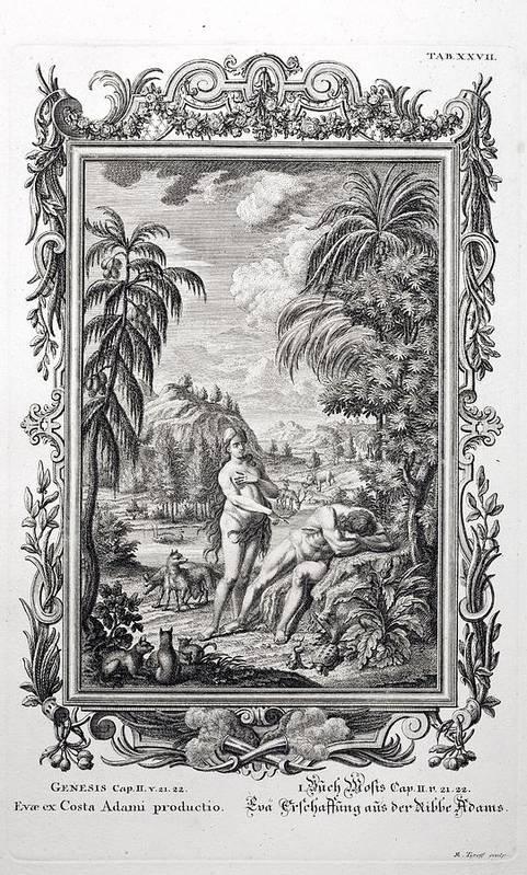 18th Century Poster featuring the photograph 1731 Scheuchzer Creation Adam & Eve by Paul D Stewart