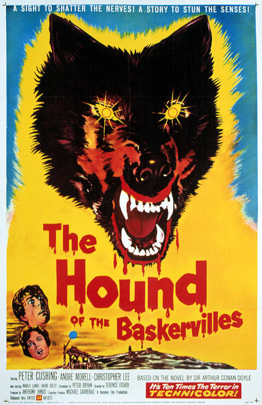 1950s Poster Art Poster featuring the photograph Hound Of The Baskervilles, Hammer by Everett