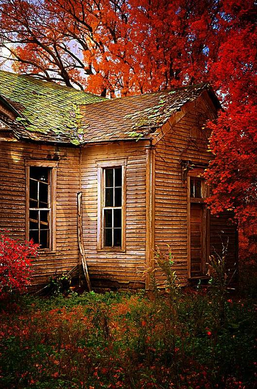 Schools Poster featuring the photograph Old One Room School House In Autumn by Julie Dant
