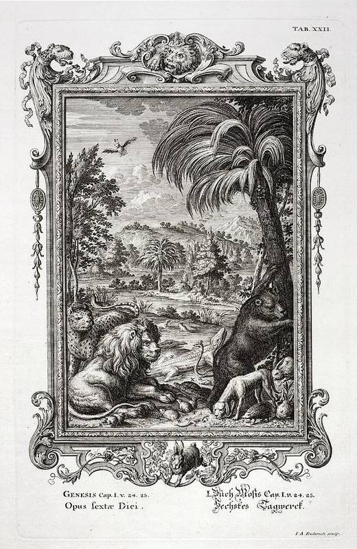 Animals Poster featuring the photograph 1731 Johann Scheuchzer Creation 6th Day by Paul D Stewart