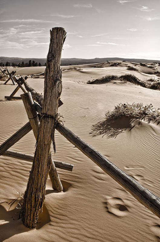 Coral Pink Sand Dunes Poster featuring the photograph Bleak by Heather Applegate