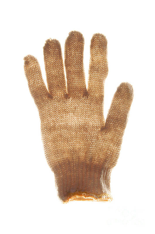 Woolen Poster featuring the photograph Woolen Glove by Bernard Jaubert