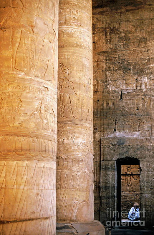 Adult Poster featuring the photograph Columns With Hieroglyphs Depicted Horus At The Temple Of Edfu by Sami Sarkis