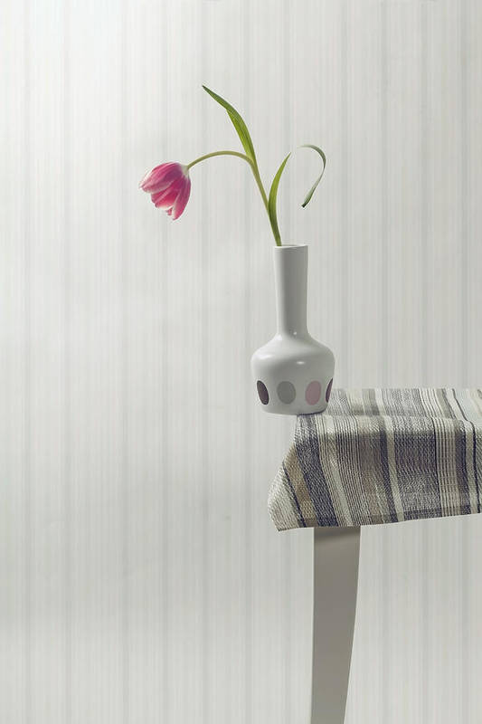 Vase Poster featuring the photograph At The Edge by Joana Kruse