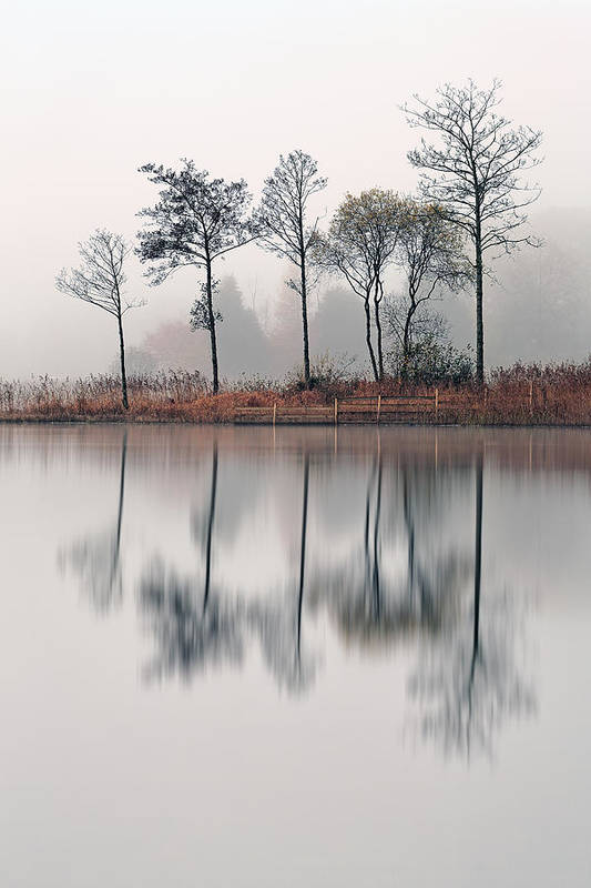 Loch Ard Canvas Poster featuring the photograph Loch Ard Reflections by Grant Glendinning