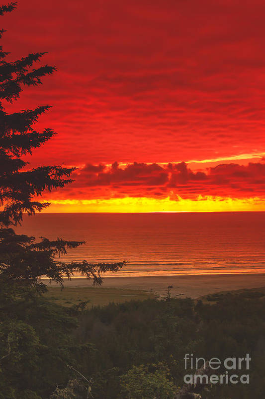 Sunset Poster featuring the photograph Red Pacific by Robert Bales