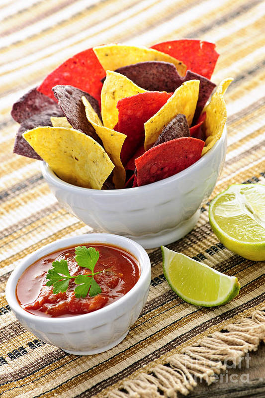 Salsa Poster featuring the photograph Tortilla Chips And Salsa by Elena Elisseeva