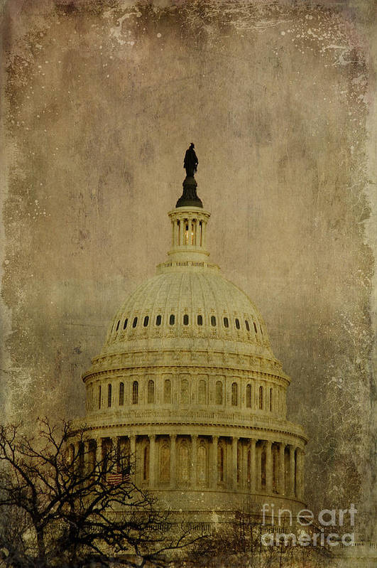 Liberty Poster featuring the photograph Aged Capitol Dome by Terry Rowe