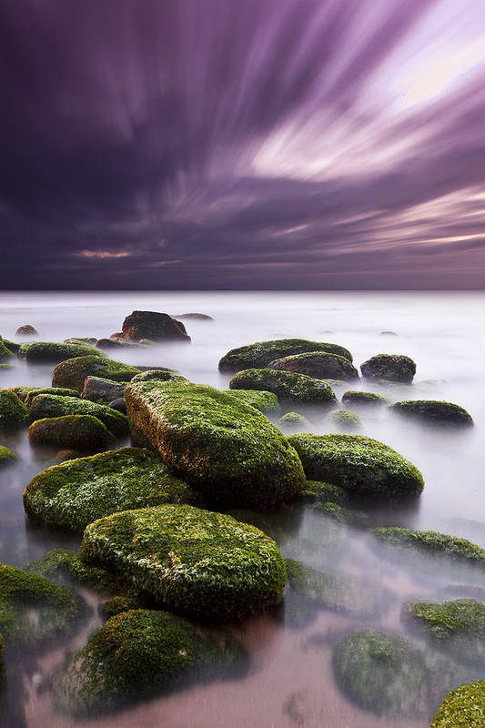 Beach Poster featuring the photograph Ethereal by Jorge Maia