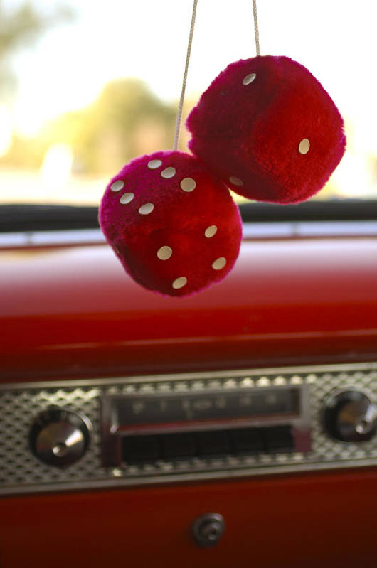 Fuzzy Dice Poster featuring the photograph Fuzzy Dice by Jill Reger