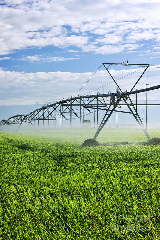 Irrigation Poster featuring the photograph Irrigation Equipment On Farm Field by Elena Elisseeva