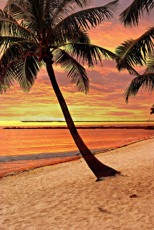 Beach Poster featuring the photograph Key West Beach by Marty Koch